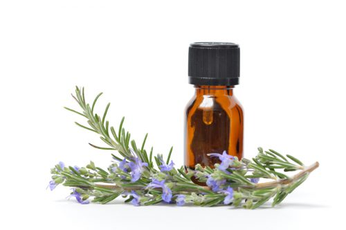 A small bottle of essential oil with sprigs of fresh Rosemary, one with flowers.